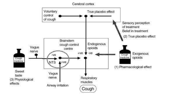 codeína para la tos seca