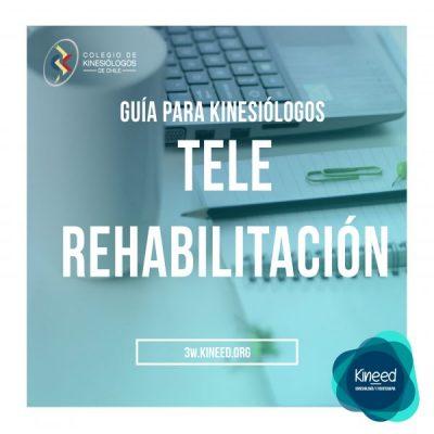 Guía práctica de Kinesiólogos para Tele rehabilitación